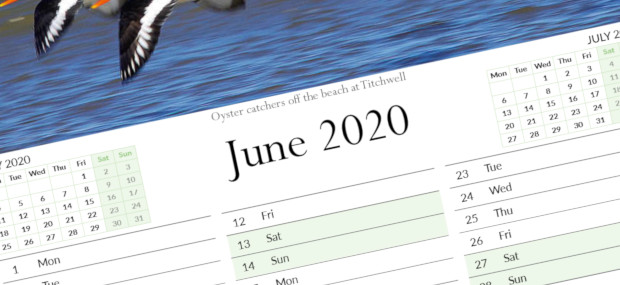 Printed Products | June 2020 calendar featuring Oyster Catchers off the beach at Tichwell in Norfolk